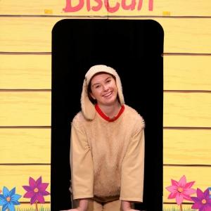 biscuit-11